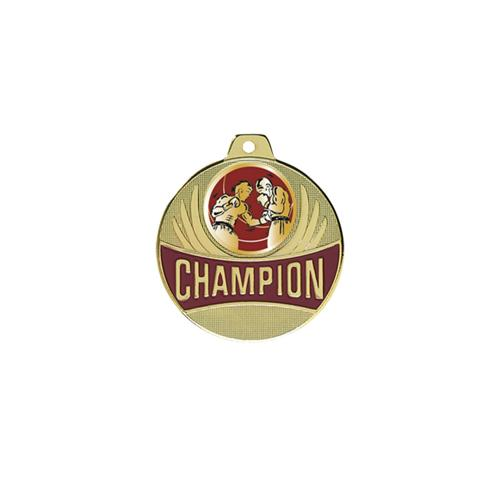 Médaille boxe or - champion 50mm.