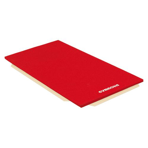 Tapis de gymnastique Gymnova associatifs houssés 200 x 100 x 5 cm