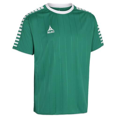 Maillot Select Argentina Vert/Blanc