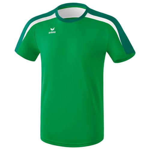 Tee-shirt PES Erima Liga 2.0 Vert/Blanc